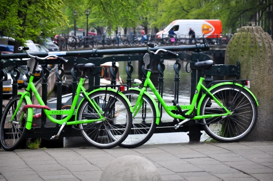 Cantik sungguh basikal-basikal derang. Striking color dari jauh dah cam tu basikal masing-masing