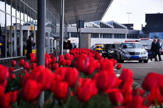 Kat Schiphol pon banyak tulip. Kalau tak berkesempatan p Kuehenhof Garden boleh la posing-posing kat airport ni je