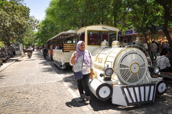 rose tehran bazaar_